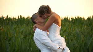Cornfield wedding video picture